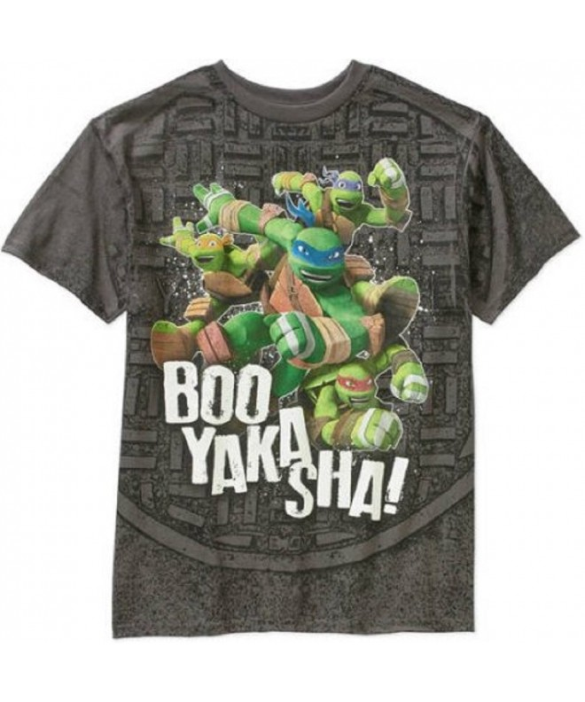 Teenage Mutant Ninja Turtles Sleeve