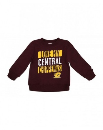 Central Michigan University Sweatshirt Maroon