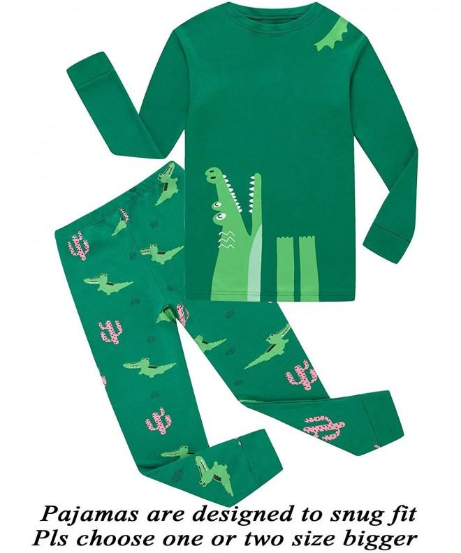 Little Pajamas Dinosaur Toddler Sleepwear