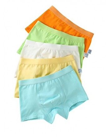 Organic Cotton Briefs Underwear 5 Pack