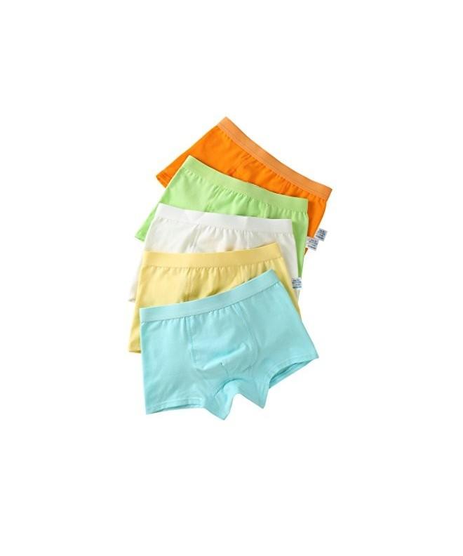 Organic Cotton Briefs Underwear 5 Pack