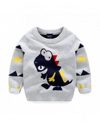 LaLaMa Toddler Dinosaur T Shirt Sweatshirt