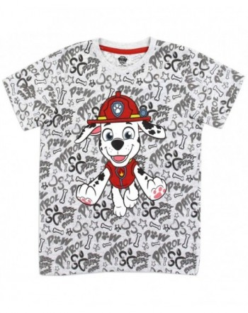 Paw Patrol Toddler Marshall Shirt
