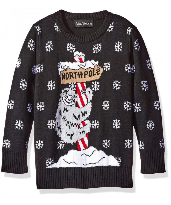 Alex Stevens Boys Sloth Sweater