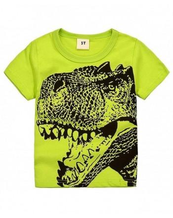 2Bunnies Little Toddler Dinosaur Sleeve