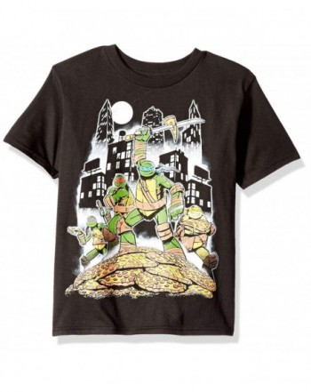 Teenage Mutant Ninja Turtles Little