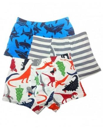 Cczmfeas Underwear Dinosaur Briefs Underpants