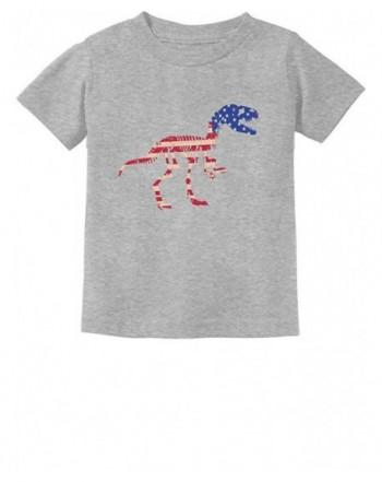 Tstars Dinosaur American Toddler T Shirt