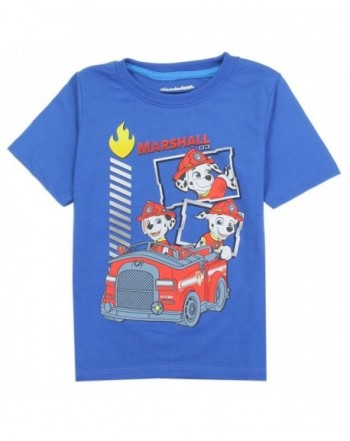Paw Patrol Toddler Marshall T Shirt